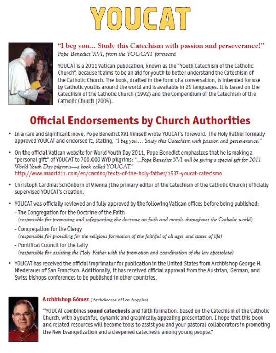 YOUCAT Endorsements - An Official Catechism For Young Adults | Catholic Book | Youth Catechism | Young Adult Catechism | Faith Raiser