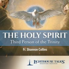 The Holy Spirit: Third Person of the Trinity by Fr. Shannon Collins | Faithraiser | Catholic Media of the Month May 2018