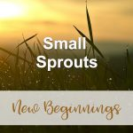 Small Sprouts (New Beginnings Devotional Reflection)