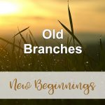 Old Branches (New Beginnings Devotional Reflection)