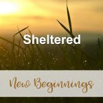 Sheltered (New Beginnings Devotional Reflection)